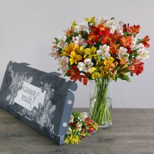 Letterbox Mixed Alstroemeria - flowers